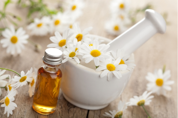 Chamomile Oil for eczema | best essential oils for eczema care