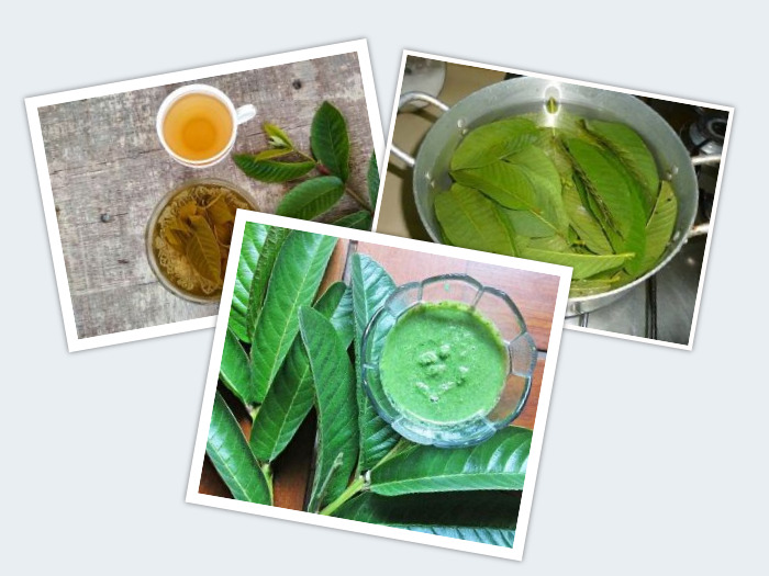 how to use guava leaves for skin