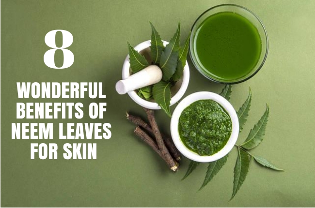 Benefits Of Neem Leaves For eczema Skin